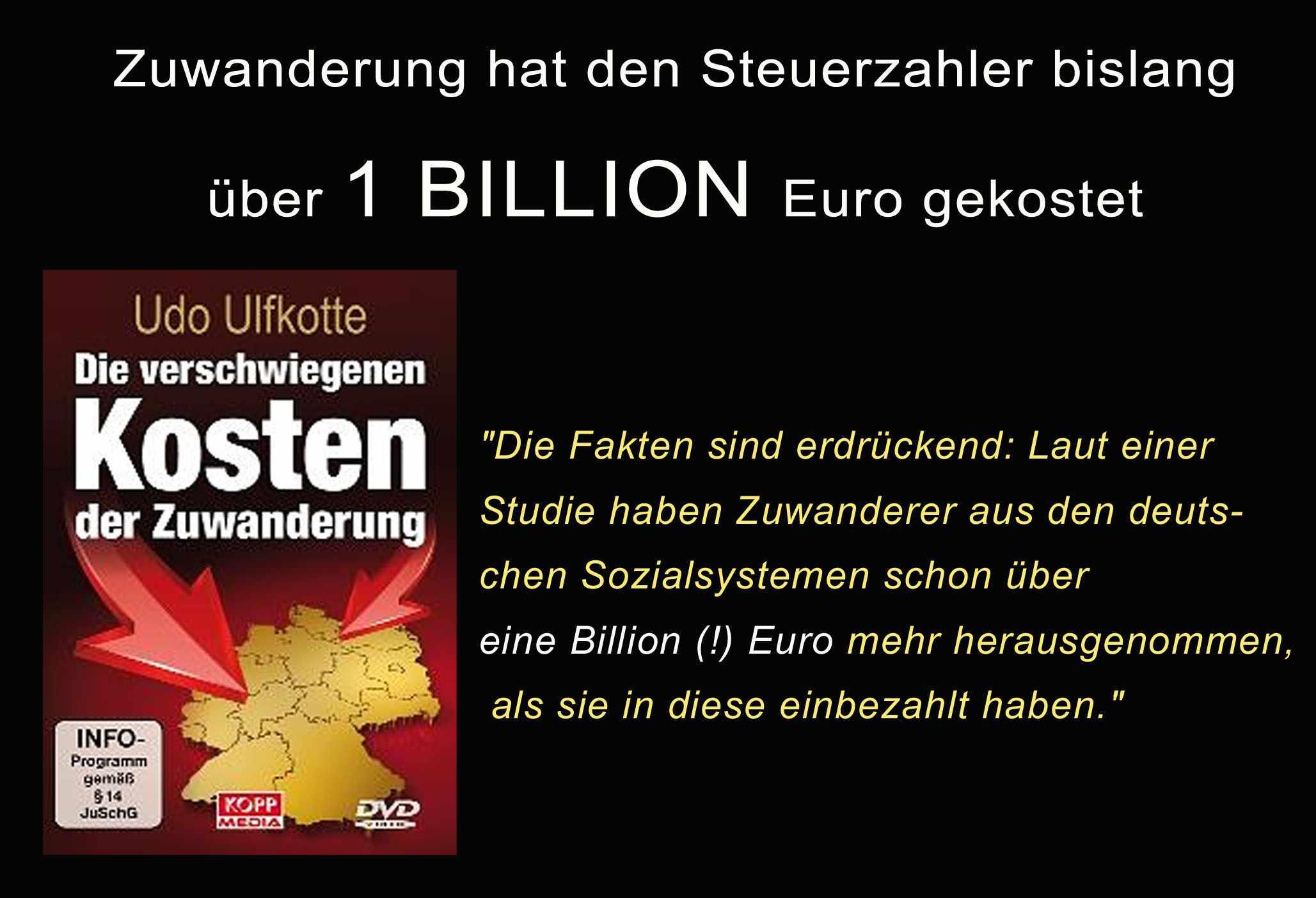 http://michael-mannheimer.net/wp-content/uploads/2012/01/Migrationskosten-011.jpg