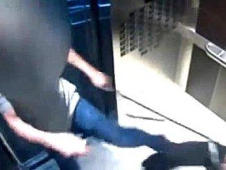 US-Boss-Desmond-Hague-tritt-einen-Hund-im-Fahrstuhl.jpg