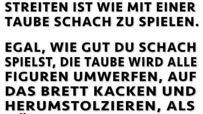 taube_schach.jpg